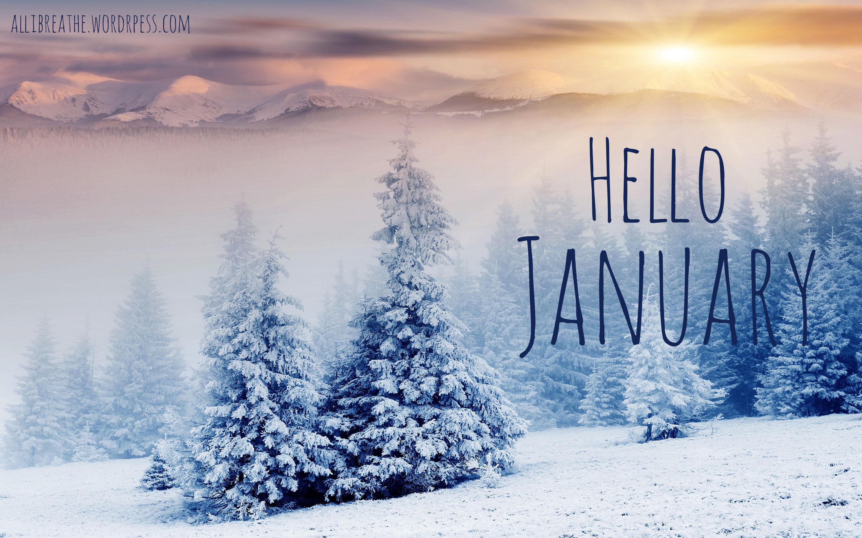 January Goals Update fromonegeektoanother.com
